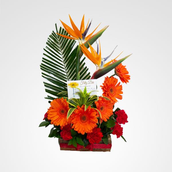 arreglo de flores aves del paraiso y gerberas alma mia