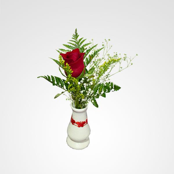 detalle floral rosa roja encanto