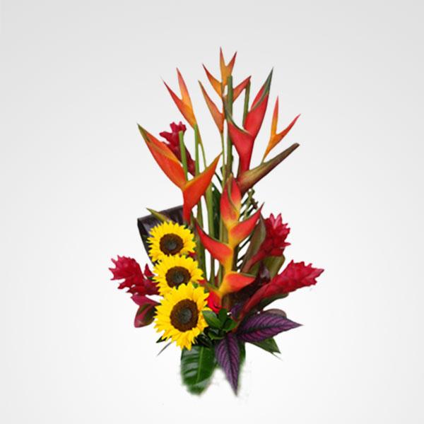 arreglo heliconias ginger magic floreria bogota
