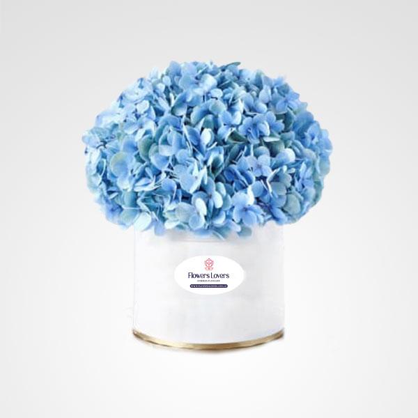 caja de hortensias floreria bogota