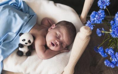 ¿Cuáles flores son adecuadas para el nacimiento de un bebé?